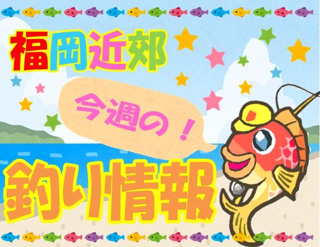 ★福岡近郊釣り情報pop★ 1