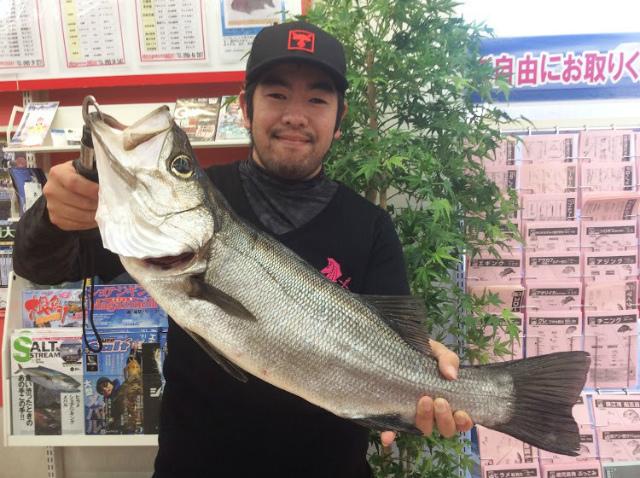 Point hirasuzuki 190407 01