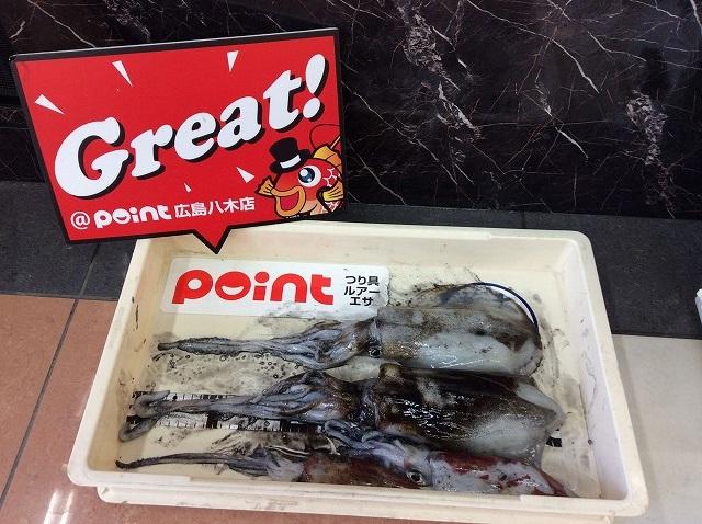 Point aori 1114