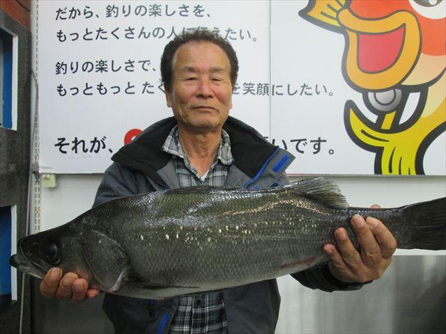 Point hirasuzuki 191123 1
