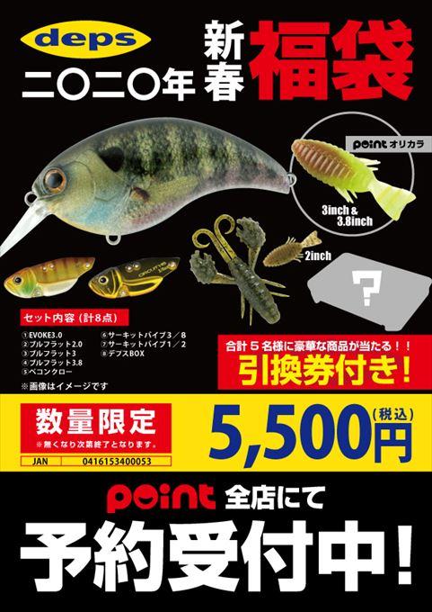 デプス5500円 r