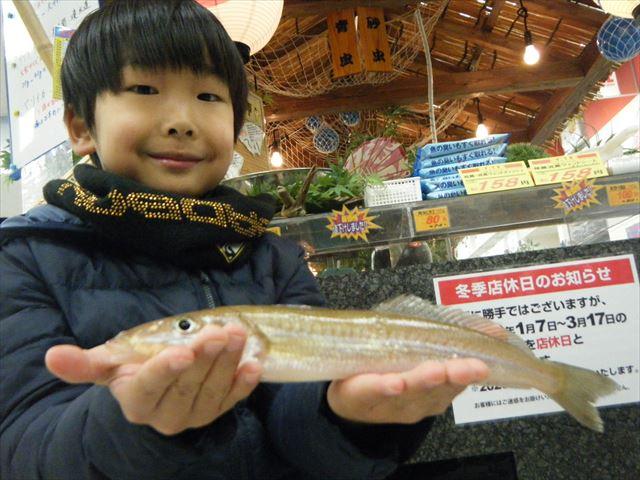 Matsue kisu 200111 1