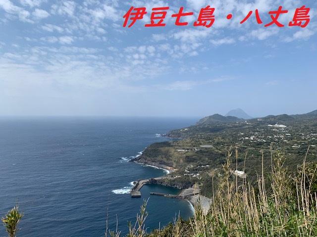 Image11 1