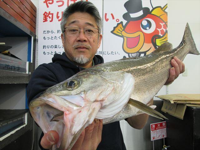 Point suzuki 200315 1