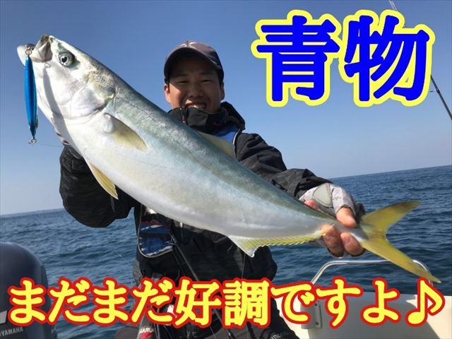 Tokitu yazu 200407 0