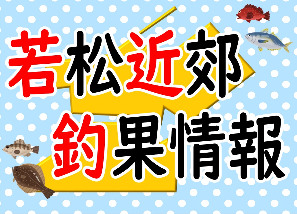 釣果情報hp用アイキャッチ① 1