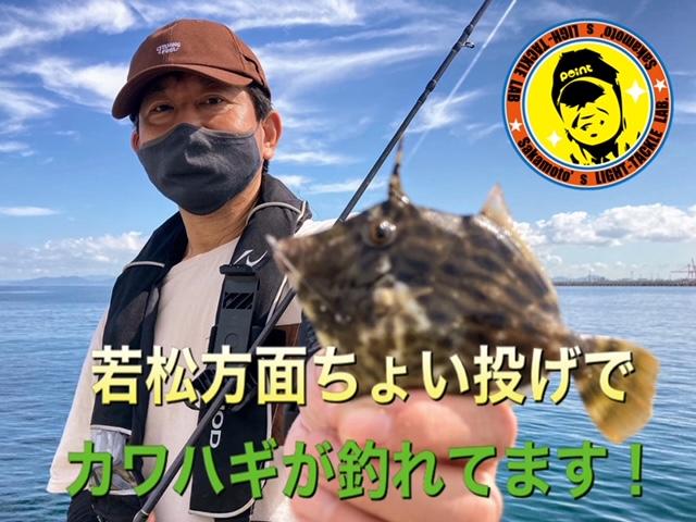 若松カワハギ1 2